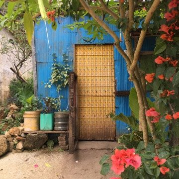 Coffee Beans and Bahias: Day Tripping on the Oaxacan Coast