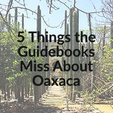 5 Things the Guidebooks Miss about Oaxaca