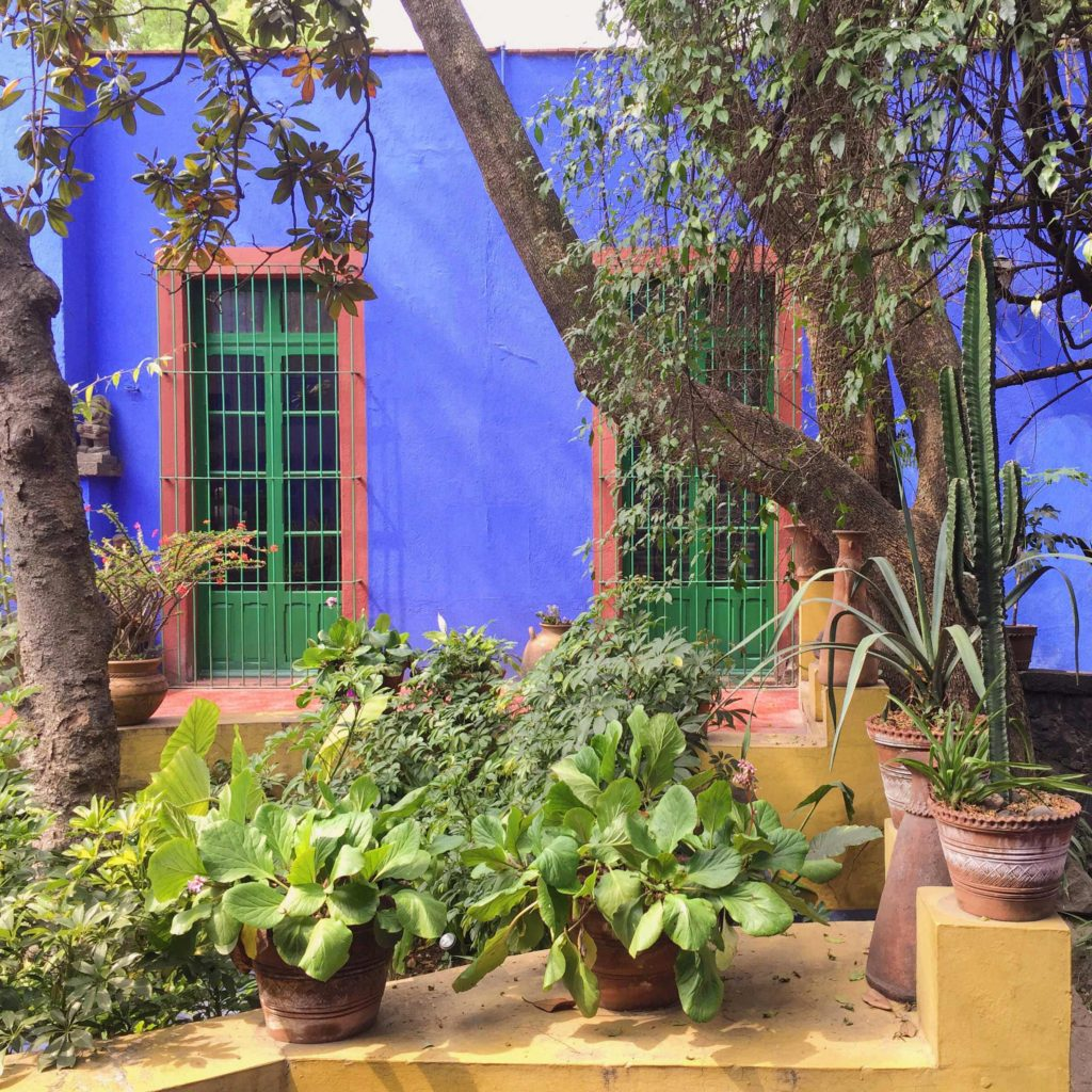 Garden at the Frida Kahlo Museum Mexico City