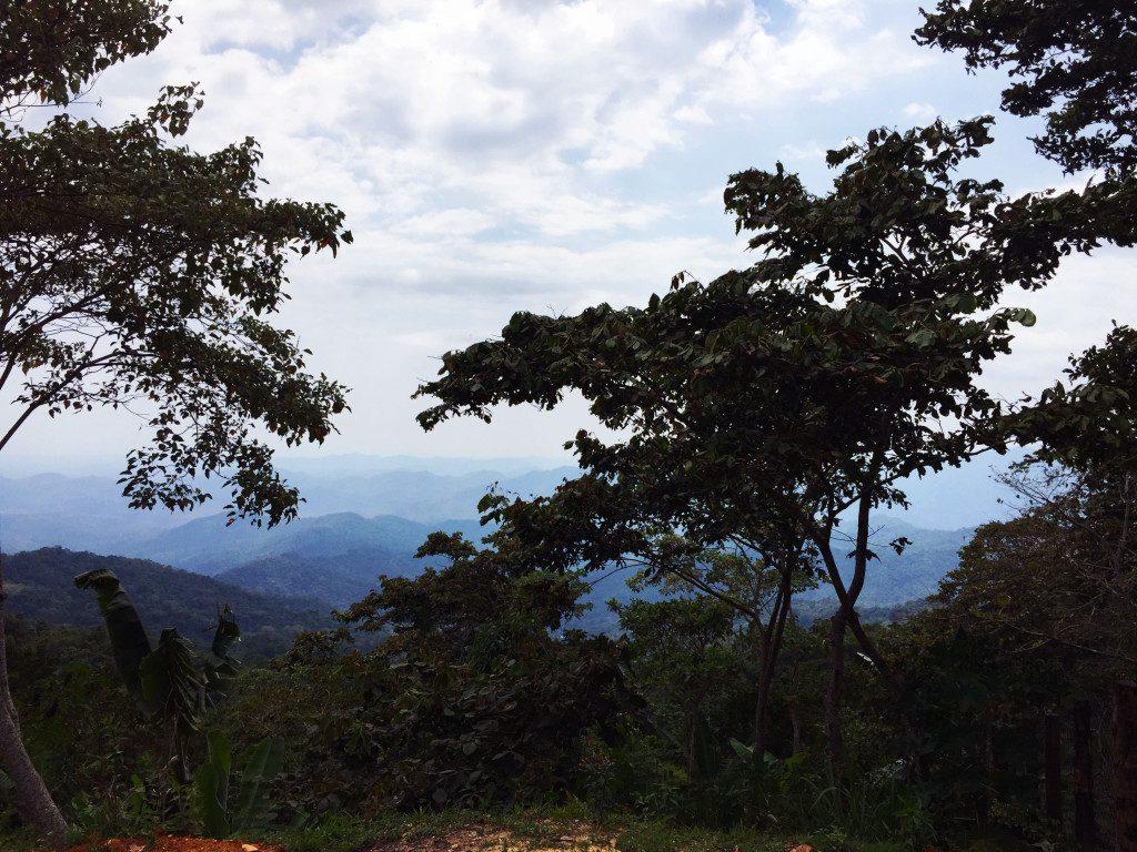 Pluma Hidalgo Mountain Views