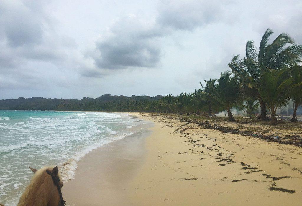 Samana Peninsula, Dominican Republic - Rincon Beach horseback