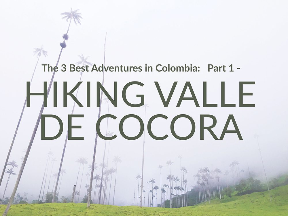 hiking valle cocora