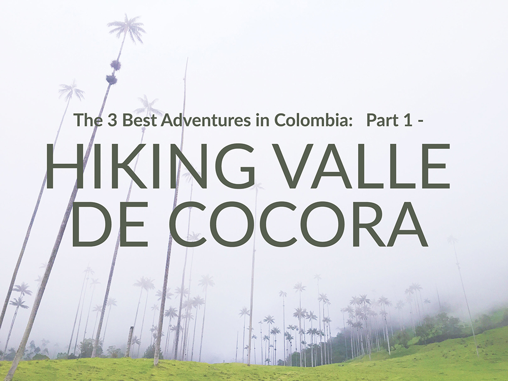 hiking valle cocora