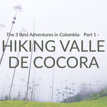 hiking valle de cocora