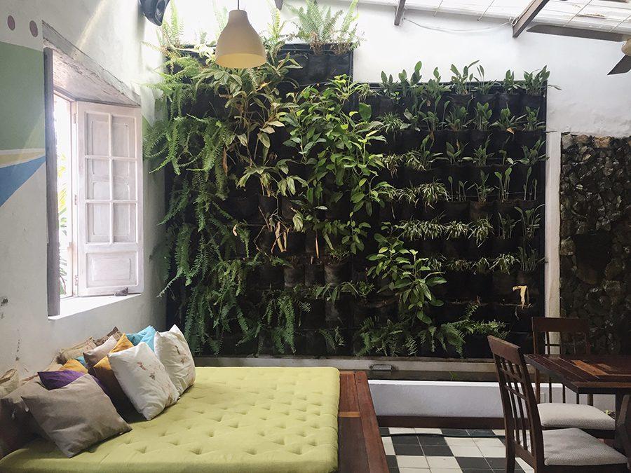 cute interior of ikaro cafe, Santa Marta