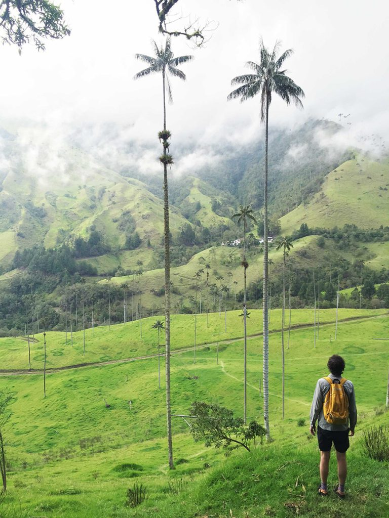 Justin looking at Valle de Cocora, Colombia
