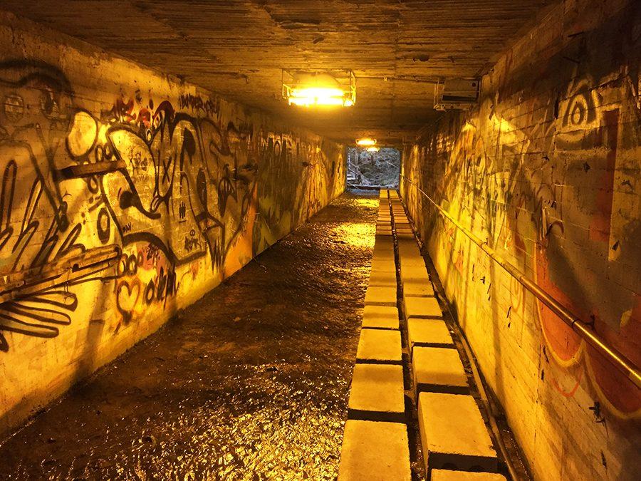 Tunnel to Quebrada la Vieja Bogota