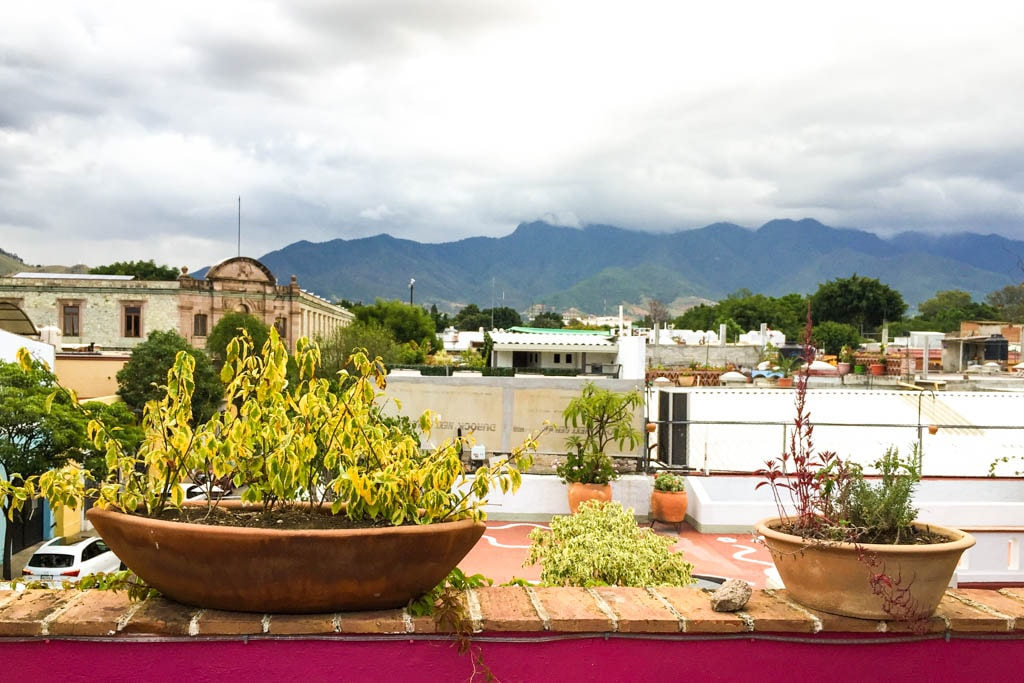roof view la olla oaxaca