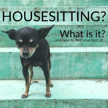 how to find your first housesit
