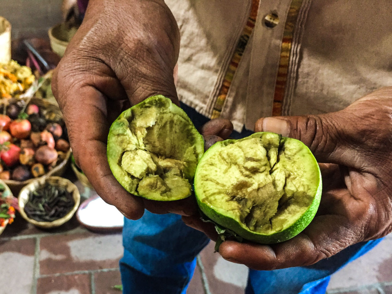 Sapote fruit - used for creating a brown dye