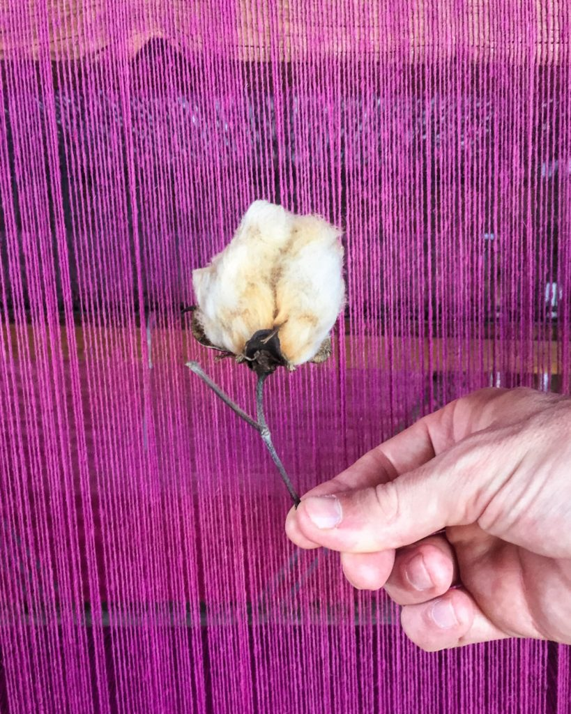raw cotton for dyeing in mitla