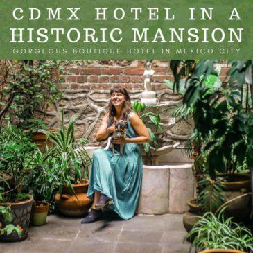 Copy of boutique hotel in mexico city el patio 77 historic hotel