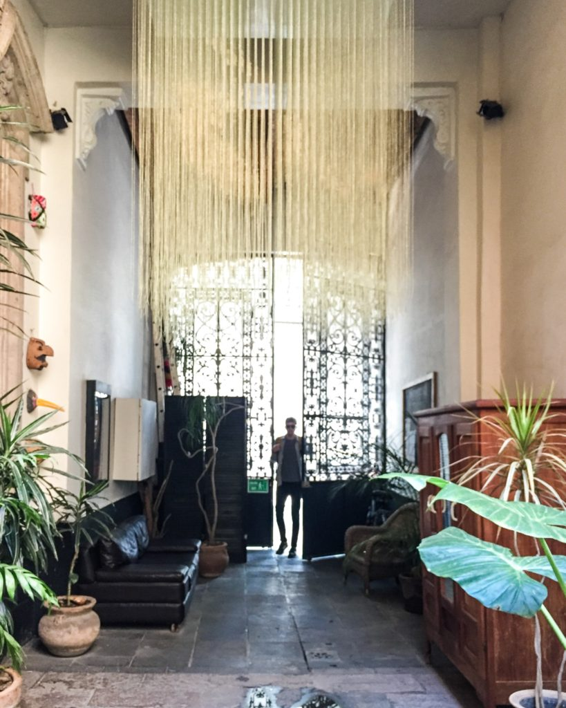 Boutique Hotel In Mexico City Brooklyn Tropicali