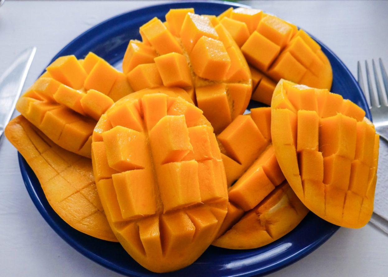 mango tulum boutique hotel