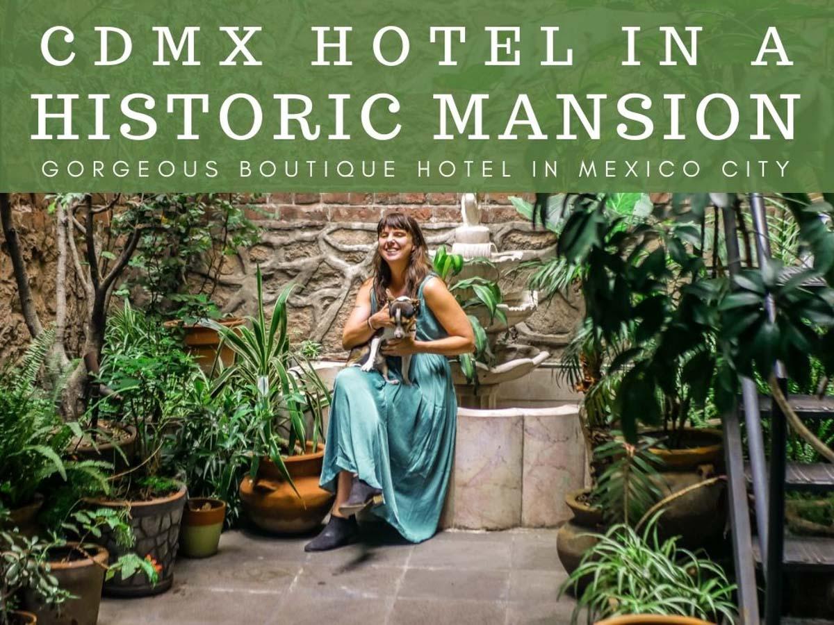 boutique hotel in mexico city el patio 77 historic hotel