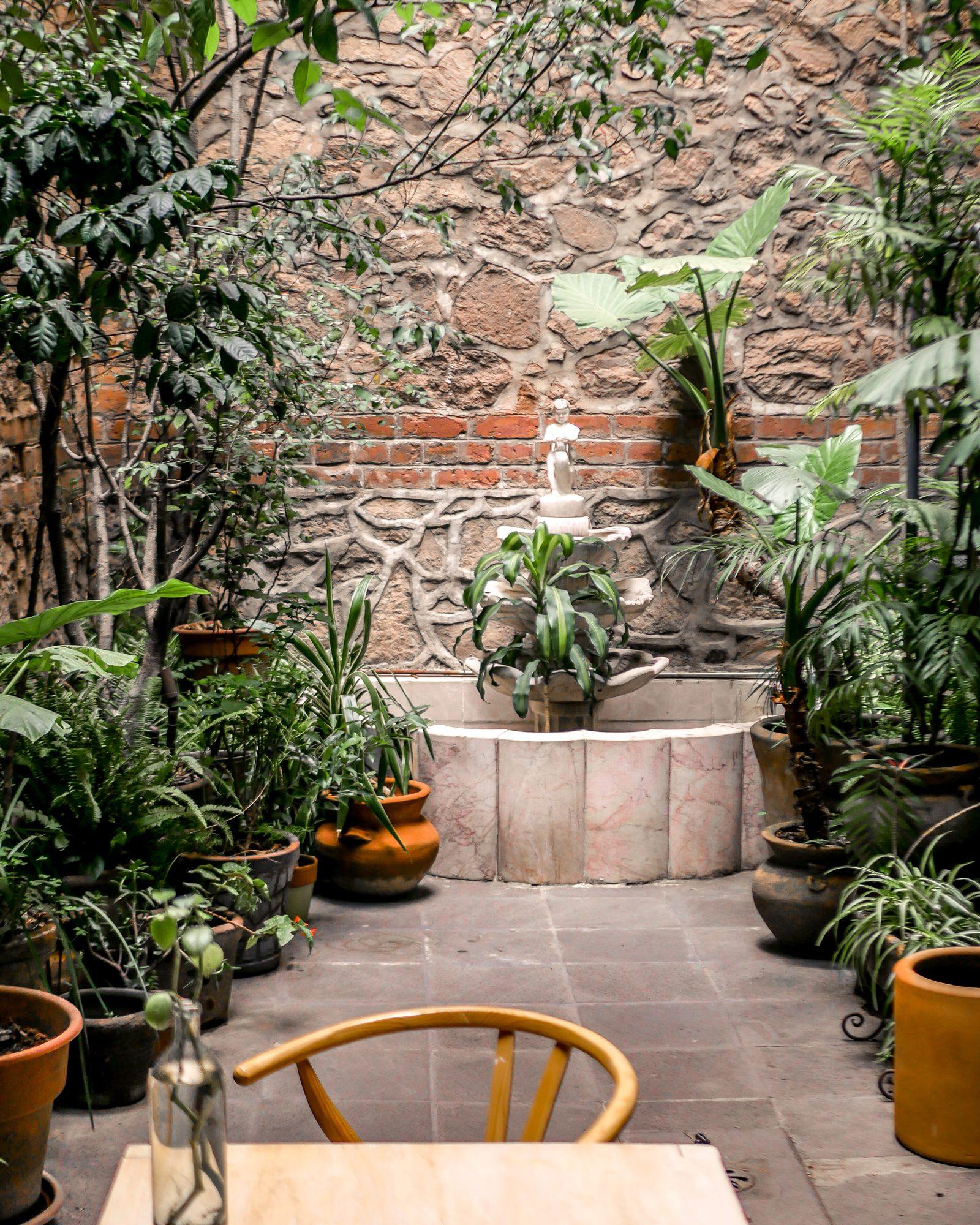 entry way el patio 77 boutique hotel in mexico city