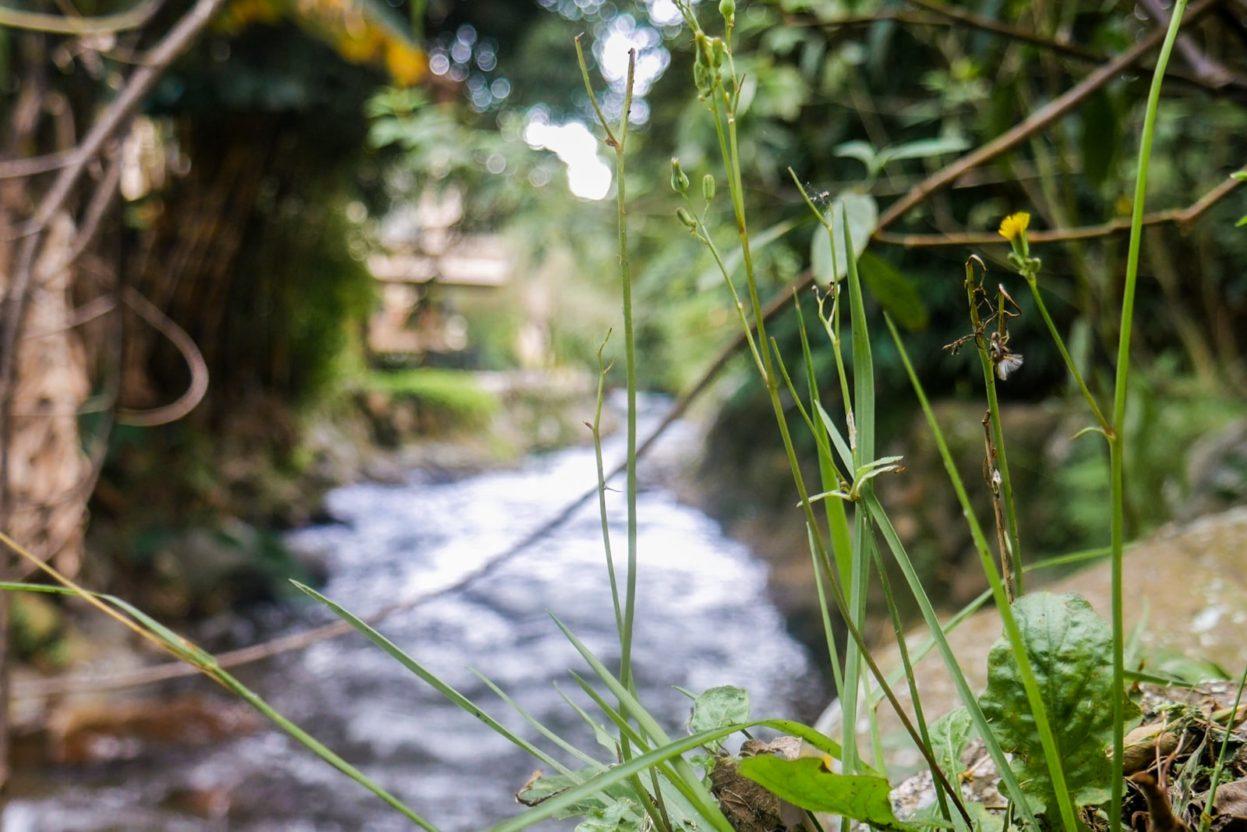 river boquete panama