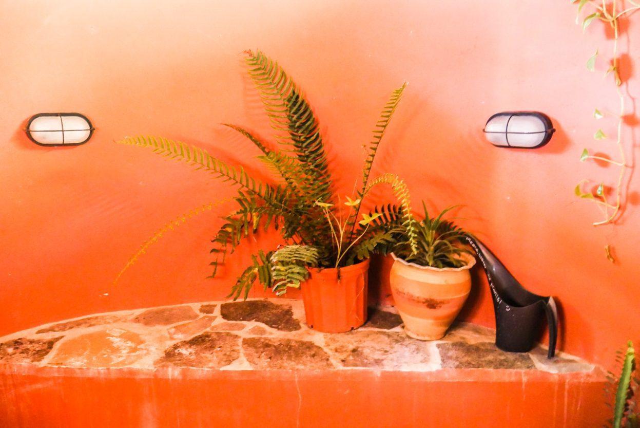 indoor/outdoor shower la finca