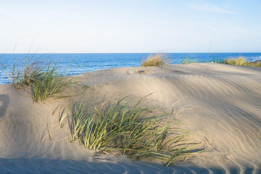 playa arenal panama sand dune