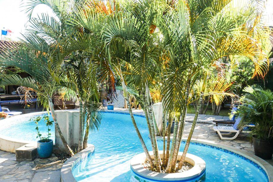 pool and bamboo casa lajagua pedasi panama