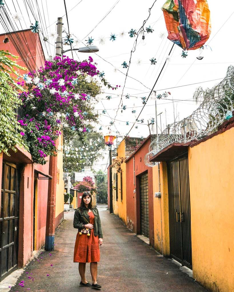 colorful streets of coyoacan