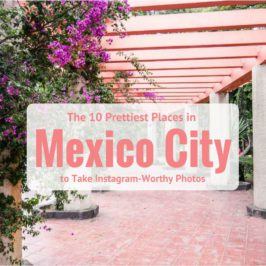 The 10 Prettiest Places in Mexico City to Take Instagram-Worthy Photos