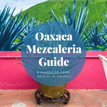 Oaxaca Mezcaleria Guide:  8 Places to Drink Mezcal in Oaxaca
