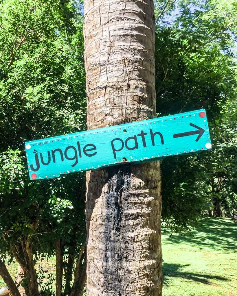 jungle path peace retreat