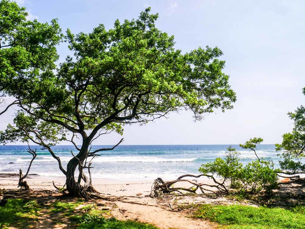 playa negra beach costa rica