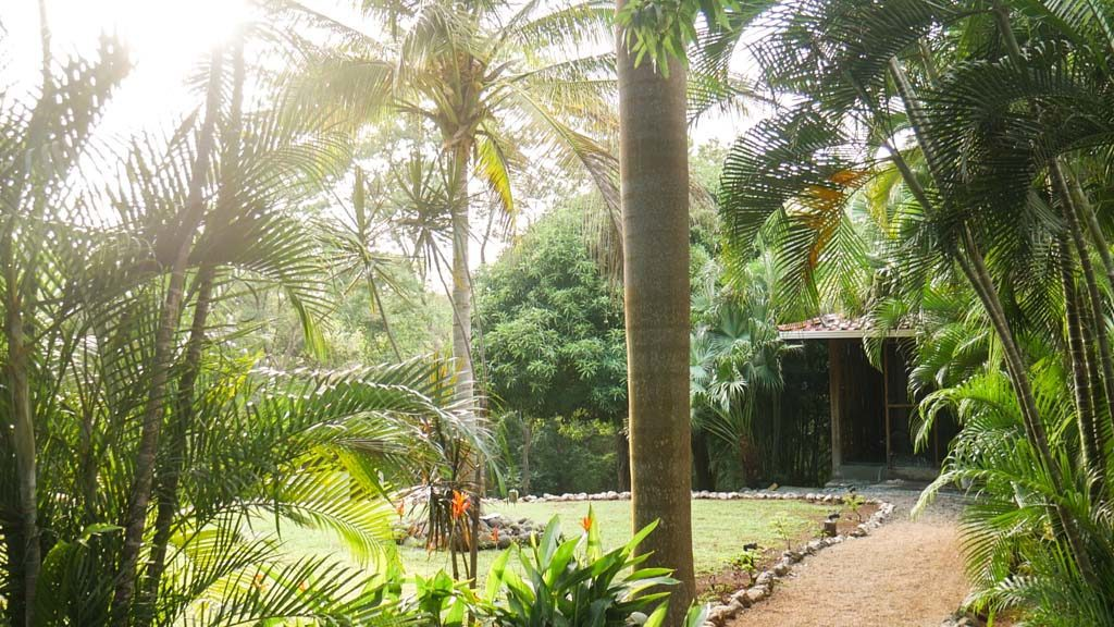 costa rica yoga retreat grounds