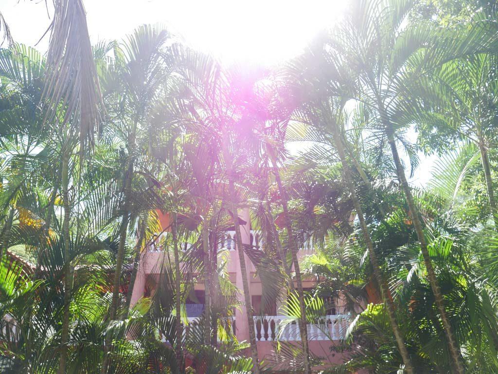 costa rica yoga retreat peace retreat