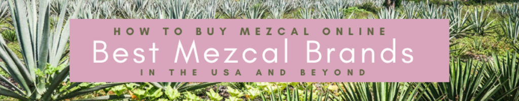 Copy of Copy of How to Buy Mezcal Online_ Best Mezcal Brands in the USALR