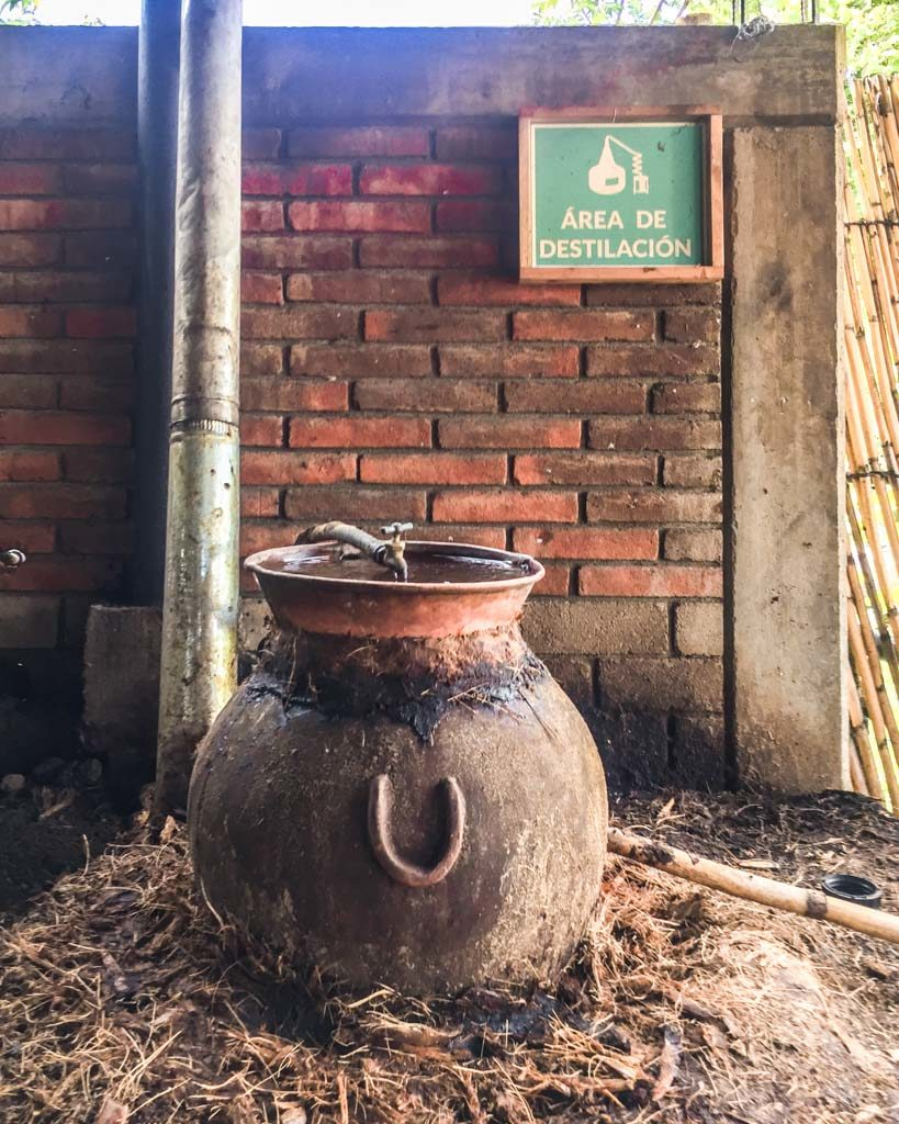 distillation oaxaca mezcal