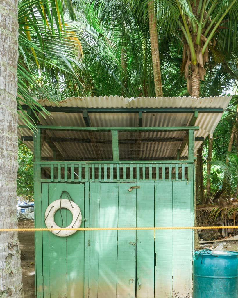 cocozuma traveler tour to tortuga island