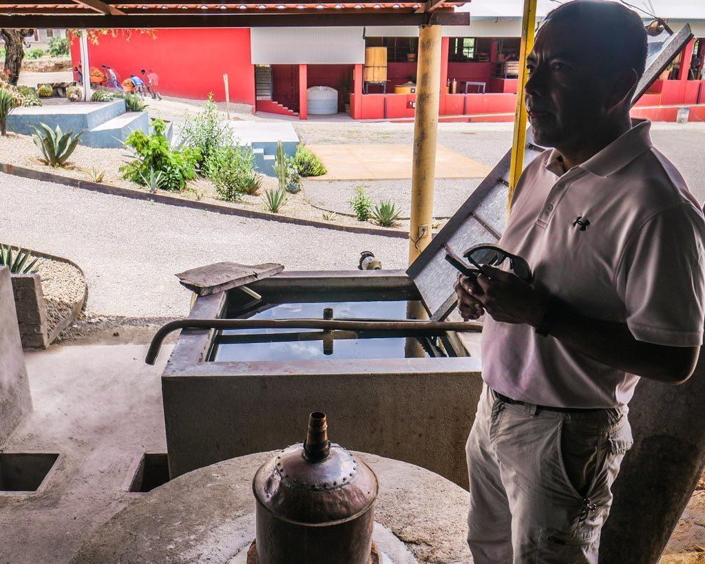 mezcal distillation oaxaca matatlan