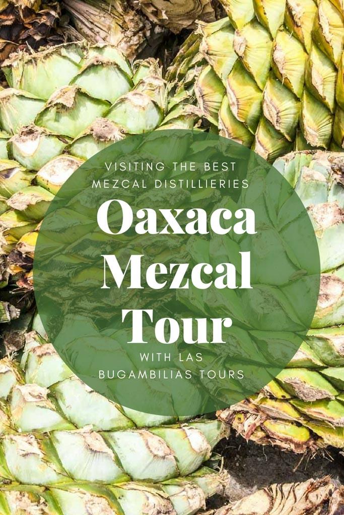 oaxaca mezcal guide pinterest 2
