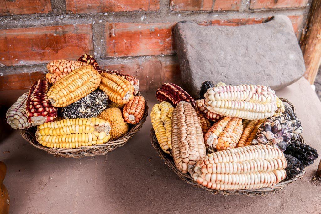 corn chicha peru