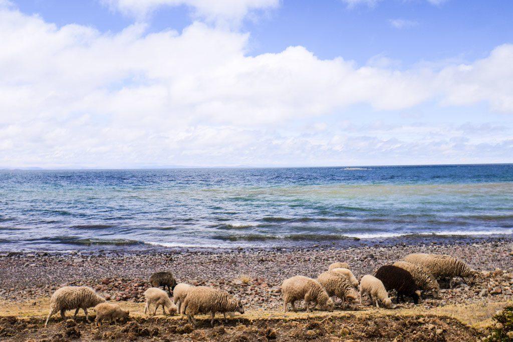 amantani island lake titicaca