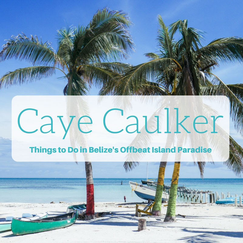 caye caulker what to do