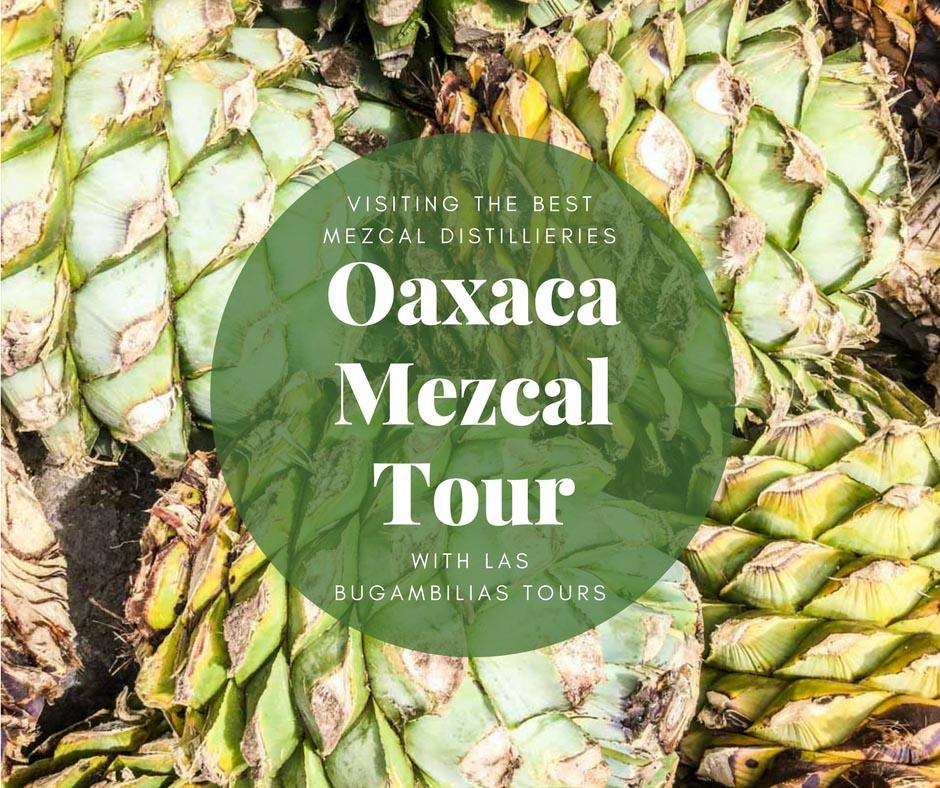 Oaxaca mezcal tour