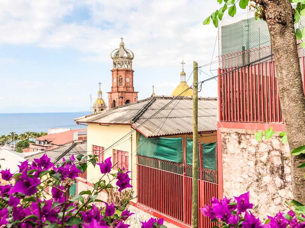 puerto vallarta food tour pitaya