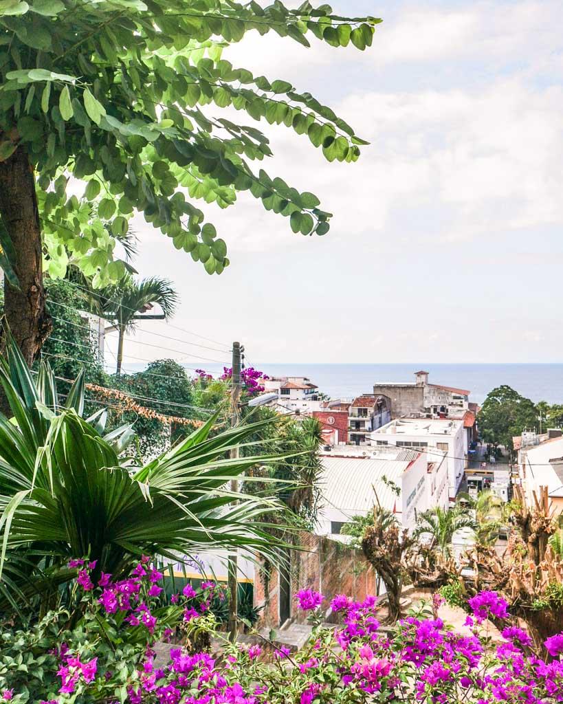 puerto vallarta food tour