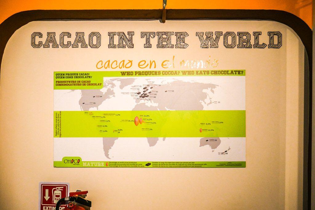 chocolate museum puerto vallarta