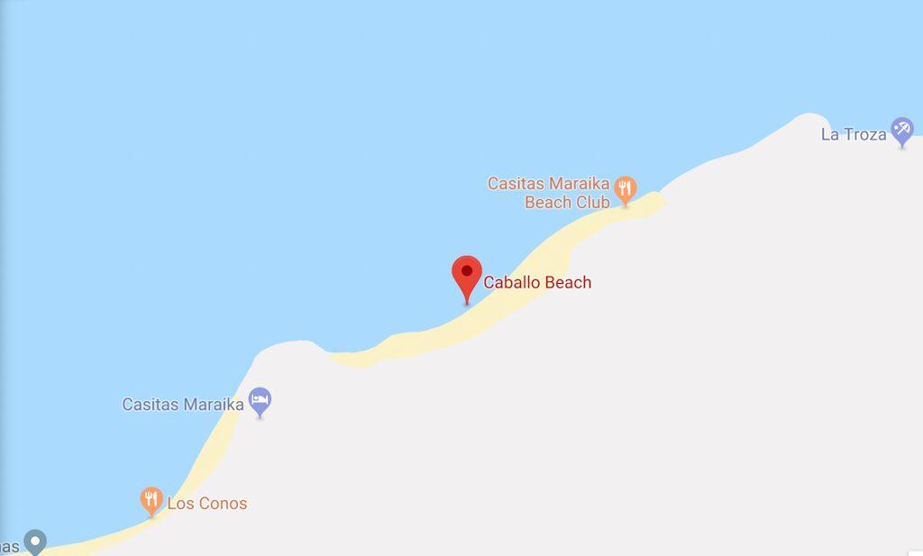 playa caballo puerto vallarta beaches