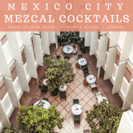 Mexico City Mezcal Cocktails: Where to Drink Mezcal Cocktails in Roma + Condesa