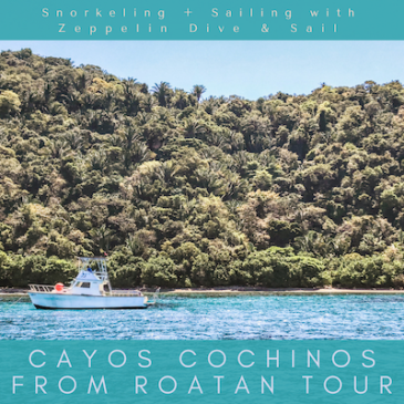 Cayos Cochinos from Roatan Tour: Snorkeling + Sailing the Most Pristine Coral Reef with Zeppelin Dive & Sail