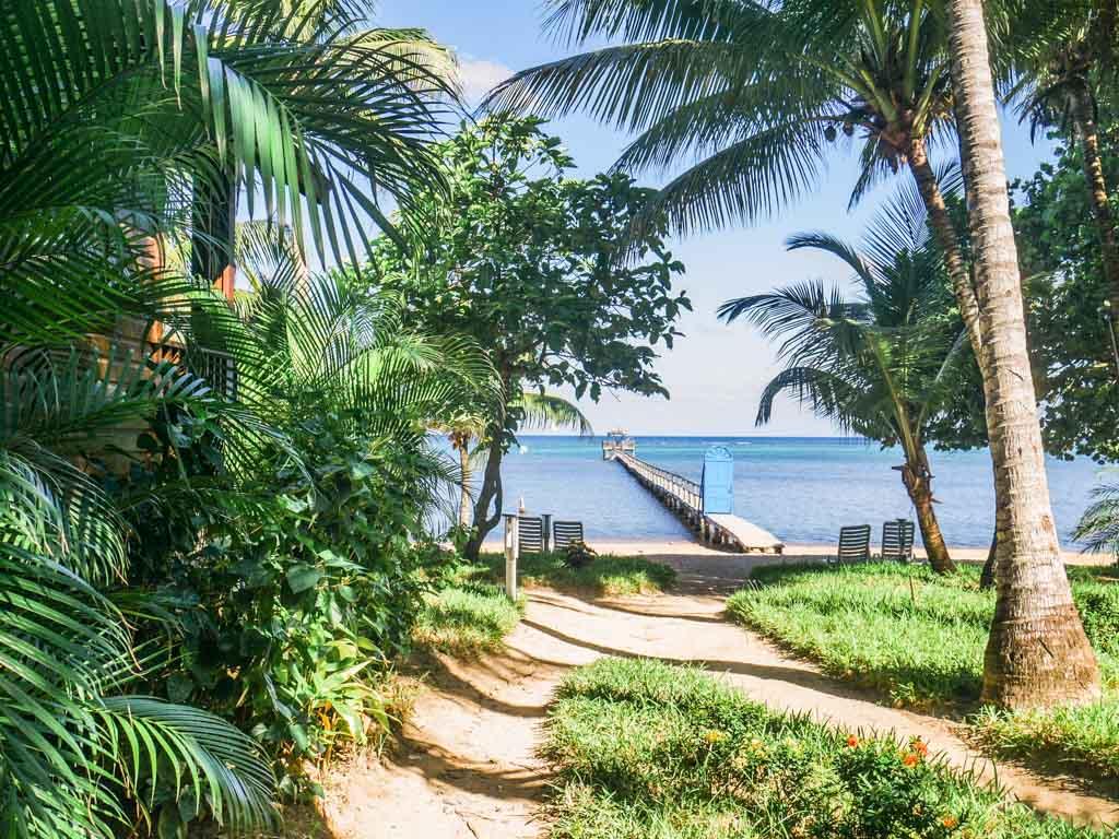 roatan hotel jungle ocean