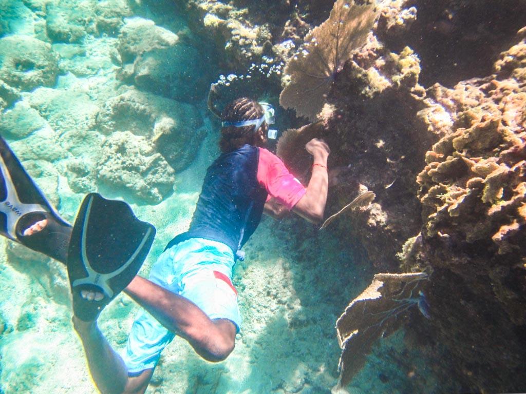 snorkeling cayos cochinos honduras