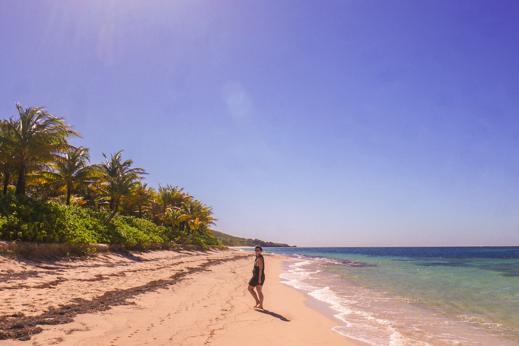 camp bay beach roatan travel honduras