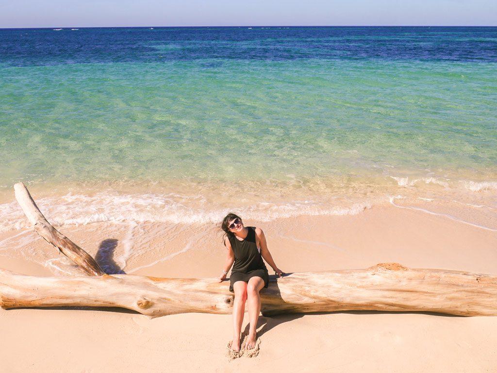 camp bay lodge nature ocean beach